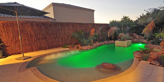 Hamilton Hill Concrete Freeform Pool