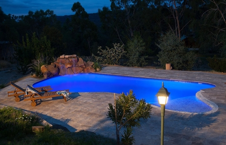 Swan View Concrete Freeform Pool - Pool and Water Feature