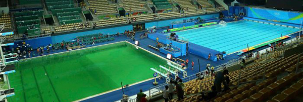 olympic swimming - green pool